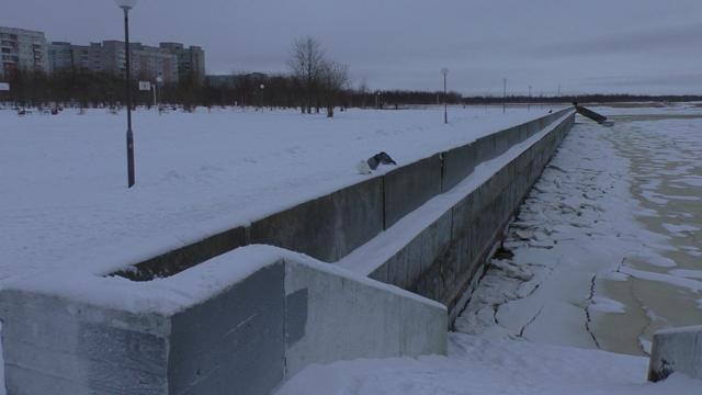 В Северодвинске Приморский парк преобразится на 47 миллионов. Объявлен аукцион