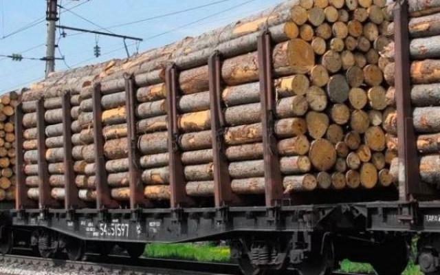 Архангельский лес ударными темпами утекает в Финляндию