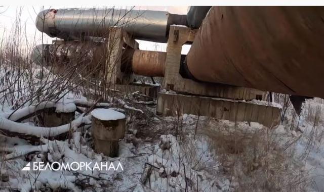 Сотрудники Росгвардии задержали мужчину, разбиравшего теплотрассу в Северодвинске