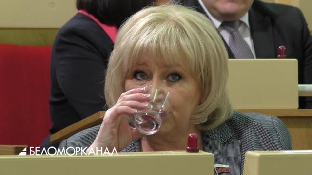 Депутатка Вторыгина стала передовиком по доходам среди поморских представителей в Госдуме