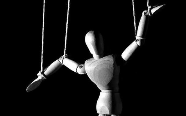 «Арлекины и пираты, циркачи и акробаты». В Архангельской области определяются контуры большого выборного забега
